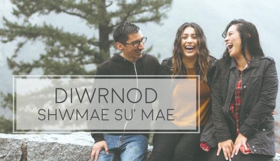 DIWRNOD-SHWMAE-SUMAE-TITLE-PIC.jpg